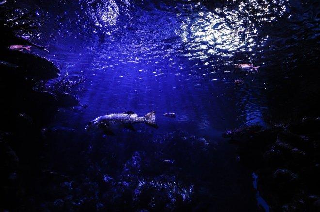 underwatercave